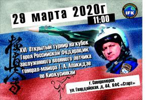 Турнир памяти Апакидзе по Киокусинкай -29 марта, г. Североморск.