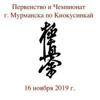 Открытое Первенство и Чемпионат города Мурманска  по киокусинкай  - 16 ноября 20