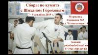 Учебно-тренировочные сборы по кумитэ Кёкусинкай  заслуженного мастера спорта  Ш